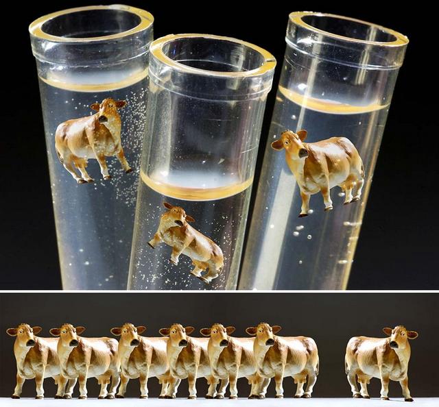 Saya sempat berpikir, roh kehidupan yang berupa gen bisa dipindah-pindah, diperbanyak dan dibuat mainan. Membuat seekor sapi sepertinya cukup mudah dari tabung reaksi daripada harus pergi ke mantri hewan. Teknologi kloning, bisa kah...? (www.consortiumproductions.com)