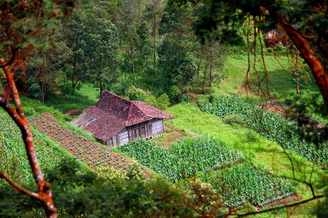 Bagaimana jika ada bangunan yang berdiri di tengah-tengah lahan produktif..? (dok.pri)