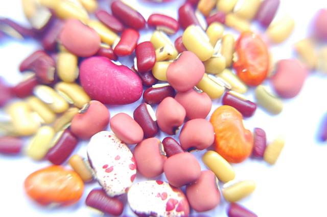 Baragam jenis kacang-kacangan banyak tumbuh di pulau timor dan menjadi sumber protein yang penting (dok.pri)