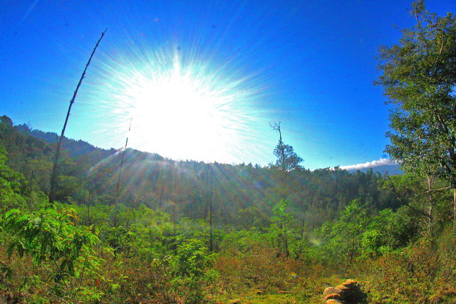 Langit khas pulau timor, yakni dengan biru pekat dan cerah. Pagi ini menyambut saya sebelum naik turun bukit di TTS (dok.pri).