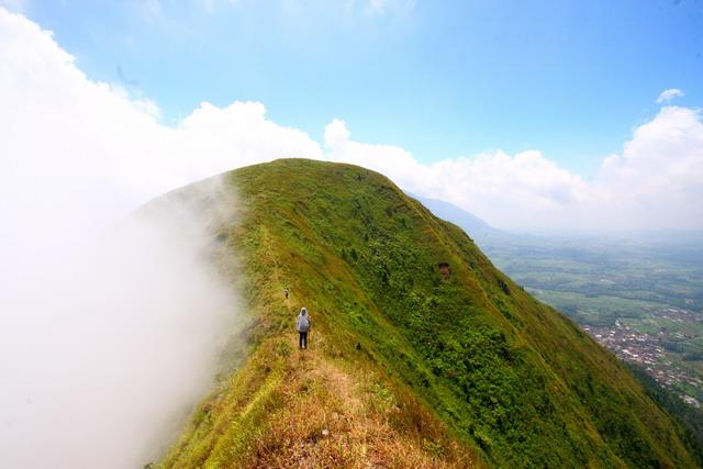 Antar punuk unta, inilah menariknya Gunung Andong (dok.pri).