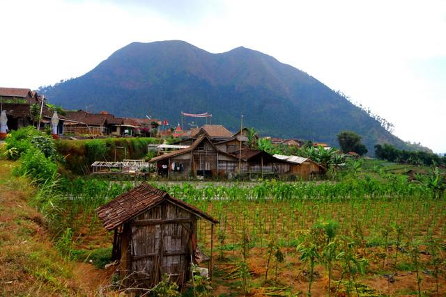 Gunung akan menjadi guru kehidupan yang baik, gunung Andong menjadi tempat belajar waktu itu (dok.pri).