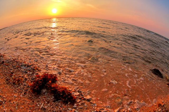 Deburan ombak mendaparkan Gracillaria sp menuju tepi pantai dan di sisi barat sana sang surya perlahan tenggelam. (dok.pri)