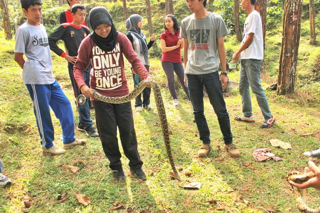 Snake handling, pelajaran wajib mereka.