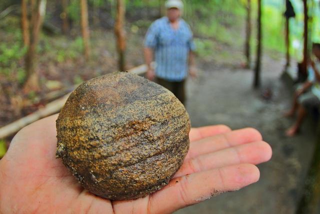 Bola batu berusia sekitar 700.000 tahun ditemukan di situs Dayu. Batu ini kemungkinan digunakan manusia purba untuk berburu, menghancurkan sesuatu, tetapi butuh bukti untuk menyimpulkan itu, demikian kata Prof. François Sémah. (dok.pri).