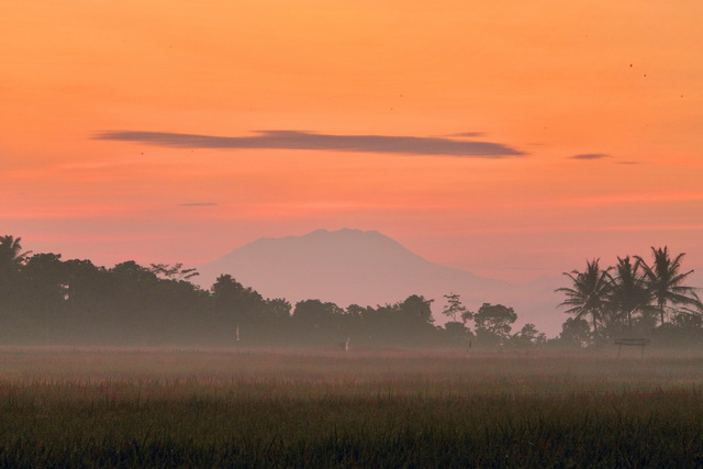 Gunung Lawu nampak dari arah jalan Tingkir menuju Gemolong. Pemandangan indah manakala fajar menyingsing (dok.pri).