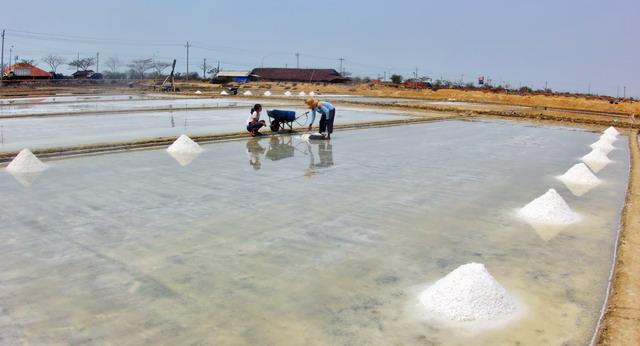 garam ladang tambak garam
