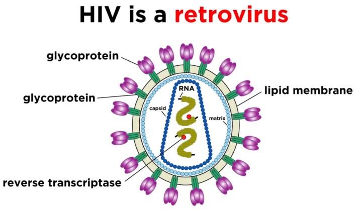 virus 7